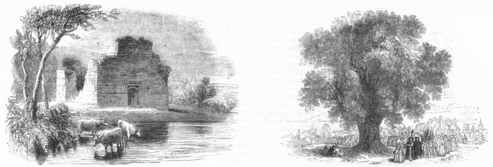 Associate Product KENT. Ct-St chapel, Aldington; Boundary Elm, Stratford 1845 old antique print