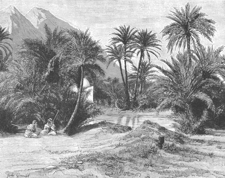 NORTH AFRICA. Oasis in Eastern Sahara 1893 old antique vintage print picture