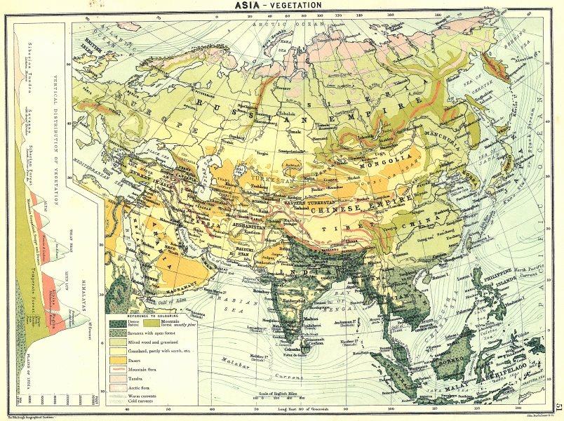 Associate Product ASIA. Vegetation 1900 old antique vintage map plan chart