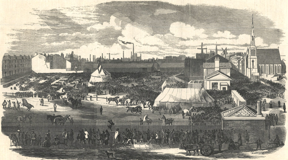 Associate Product Agricultural Society show, Haymarket, Great Homer Street, Liverpool 1852