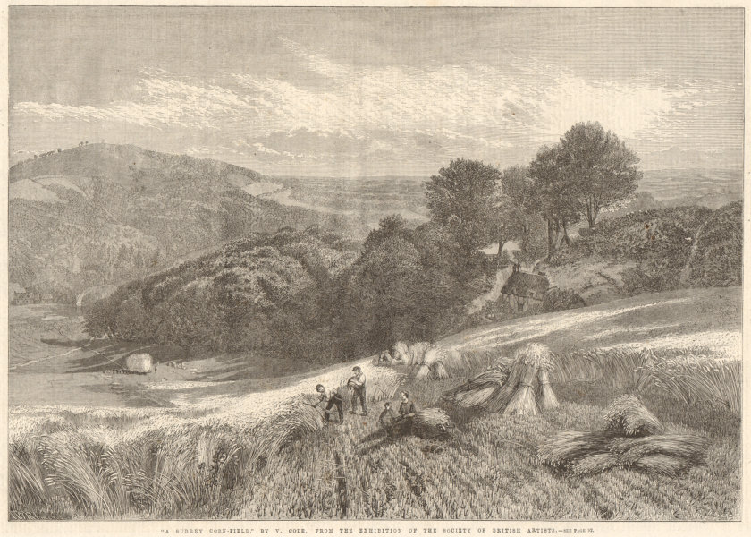 """Associate Product """"A Surrey corn field"""" by V. Cole 1861 antique ILN full page print"""