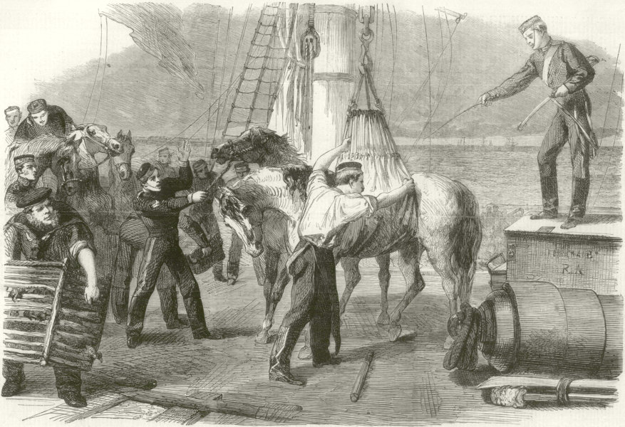 Associate Product Canada reinforcements: Shipping horses Woolwich hydraulic crane. London 1862