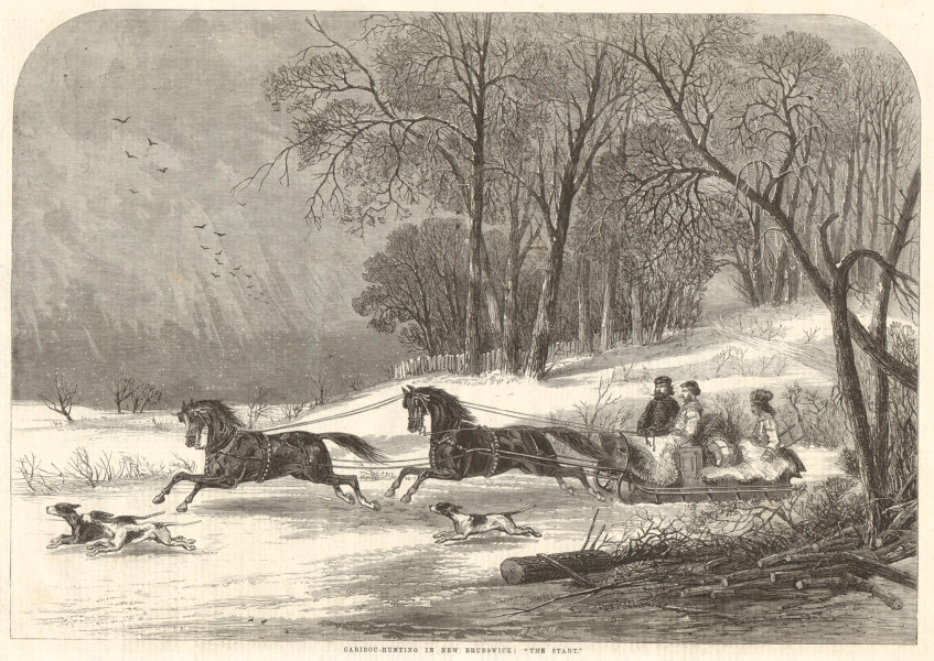 """Associate Product Caribou-hunting in New Brunswick: """"The start"""". Canada. Sledging 1863 ILN print"""