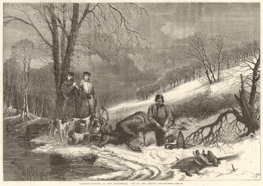"""Associate Product Caribou-hunting in New Brunswick: """"In at the death"""". Canada 1863 ILN full page"""