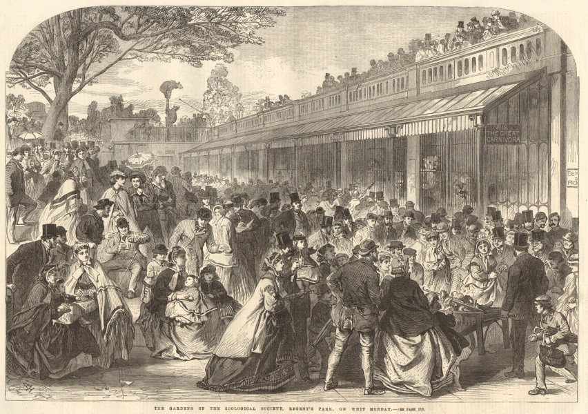 Associate Product The Zoological Society's Gardens, Regent's Park, on Whit Monday. London 1866