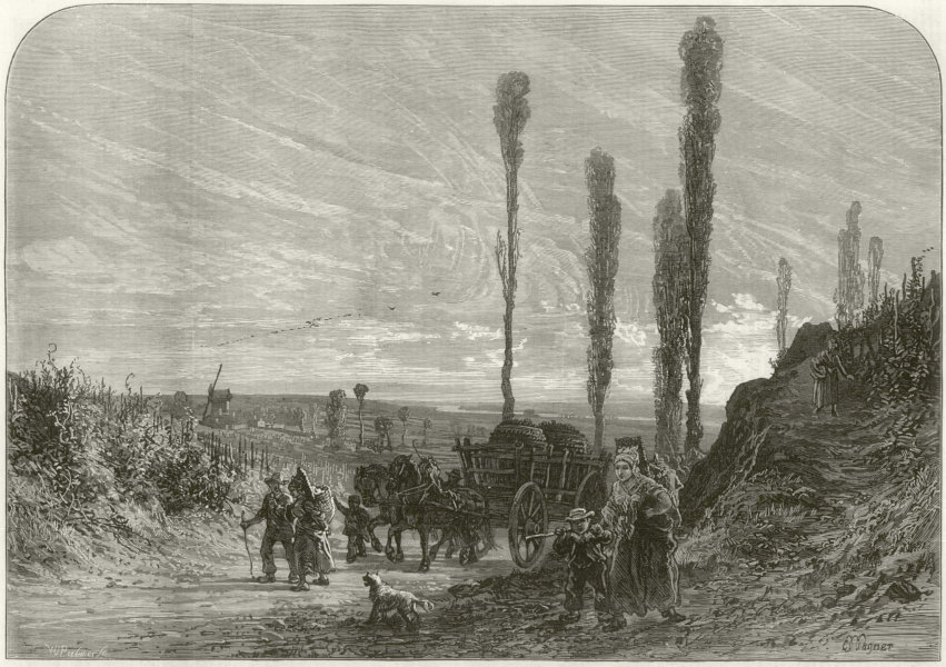 Associate Product The vintage in France: Grape gatherers returning. Wine harvest 1873 ILN print