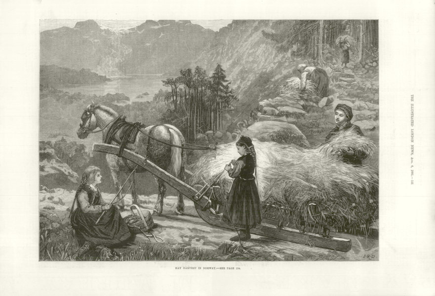 Associate Product Hay Harvest in Norway 1881 antique ILN full page print