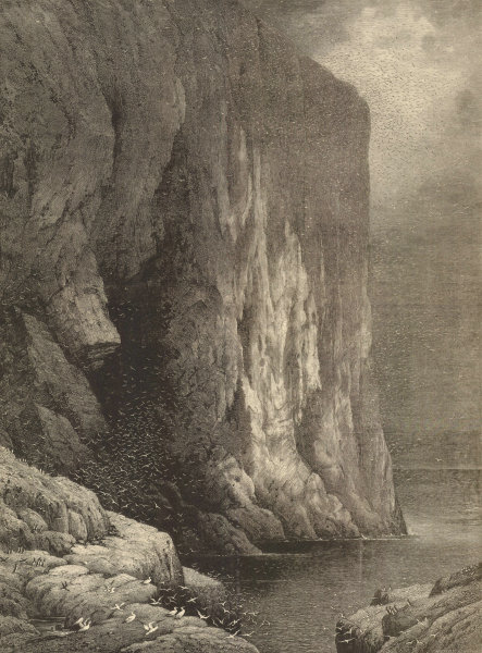 Associate Product The Bass Rock, from a picture by S. Read. Scotland 1881 antique ILN full page