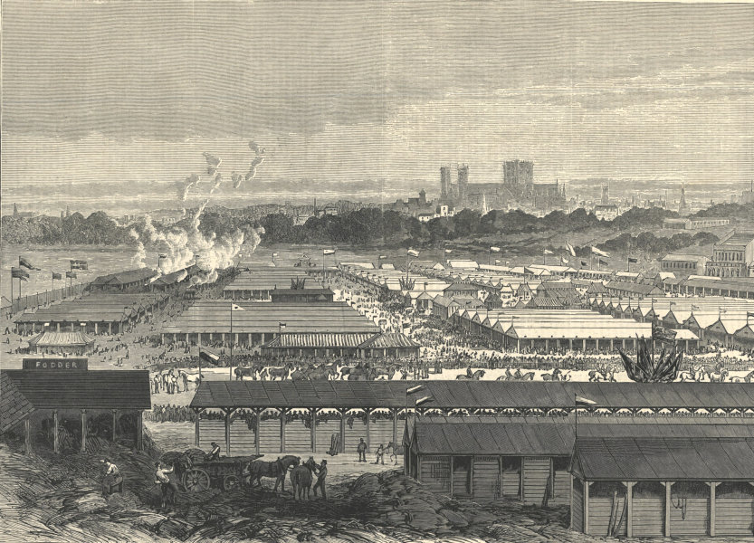 The Royal Agricultural Society at York: view of the show-yard. Yorkshire 1883