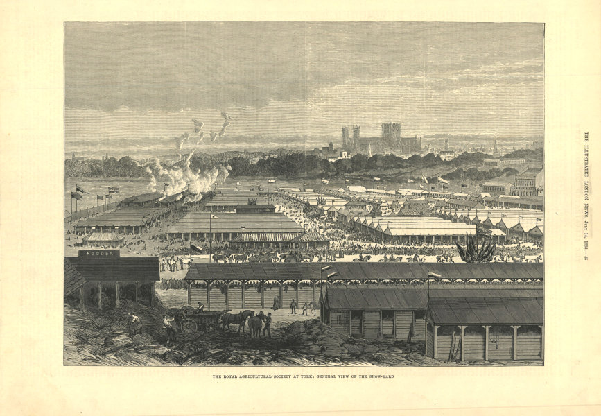 Associate Product The Royal Agricultural Society at York: view of the show-yard. Yorkshire 1883