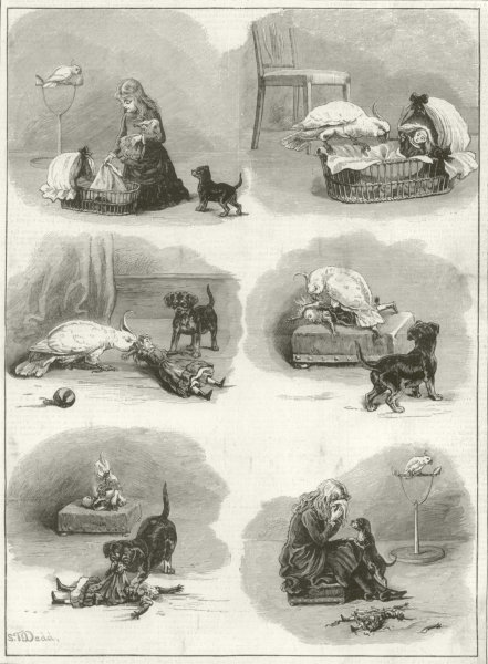 Associate Product A domestic tragedy. Children. Dog parrot doll girl 1884 antique ILN full page