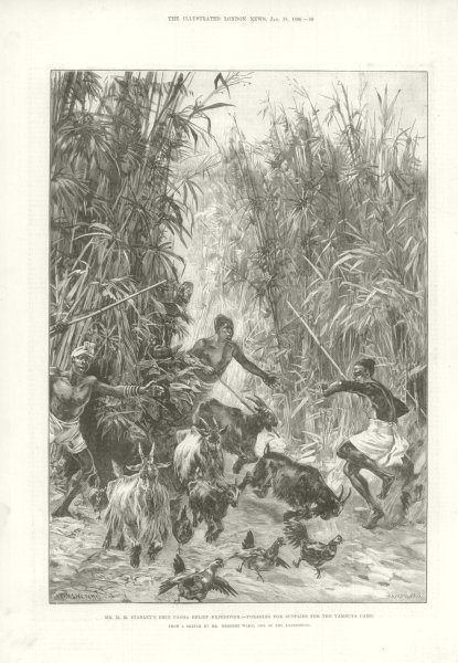 H. M. Stanley's Emin Pasha Relief Expedition. Foraging Yambuya Camp. Congo 1890