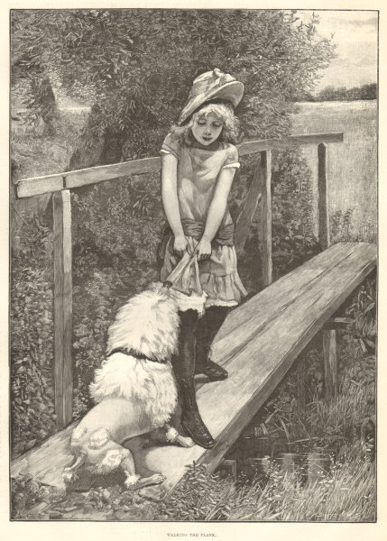 Associate Product Walking the plank. Children. Dogs 1893 antique ILN full page print