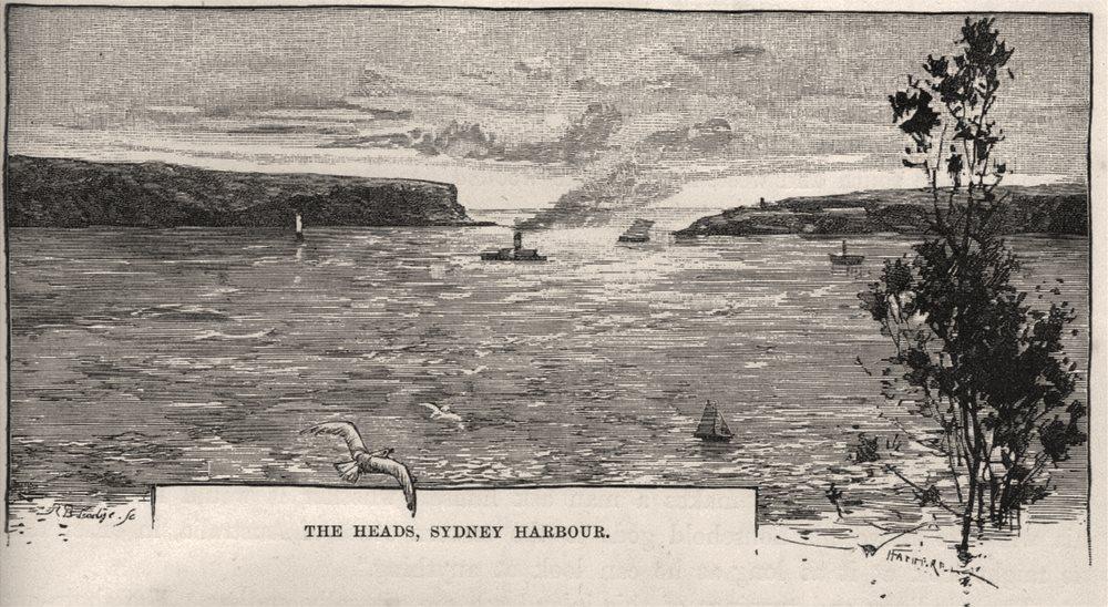 Associate Product The Heads, Sydney Harbour. Sydney. Australia 1890 old antique print picture