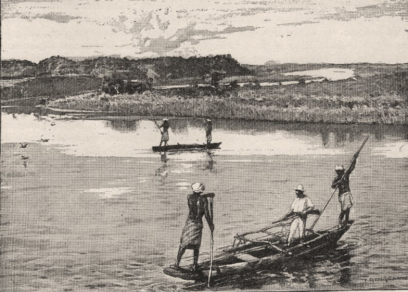 Associate Product View of the Rewa River. Fiji 1890 old antique vintage print picture