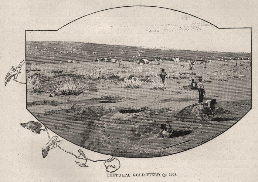 Associate Product Teetulpa Goldfield. Gold. Australia 1890 antique vintage print picture