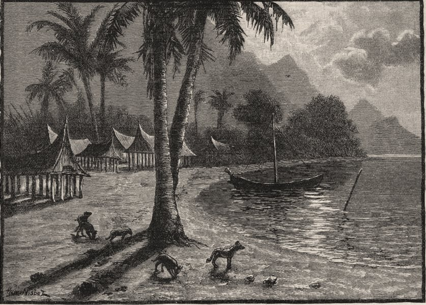 Associate Product Teste Island. New Guinea 1890 old antique vintage print picture