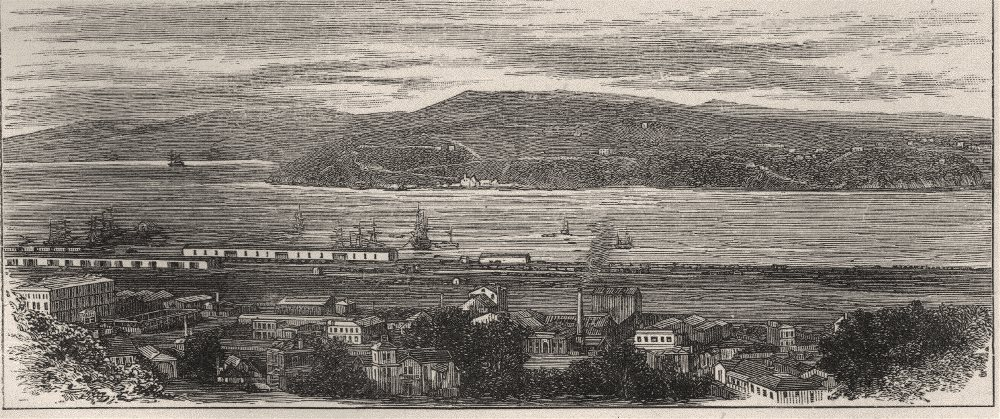 Associate Product Looking Across the Harbour from the South-West. Dunedin. New Zealand 1890