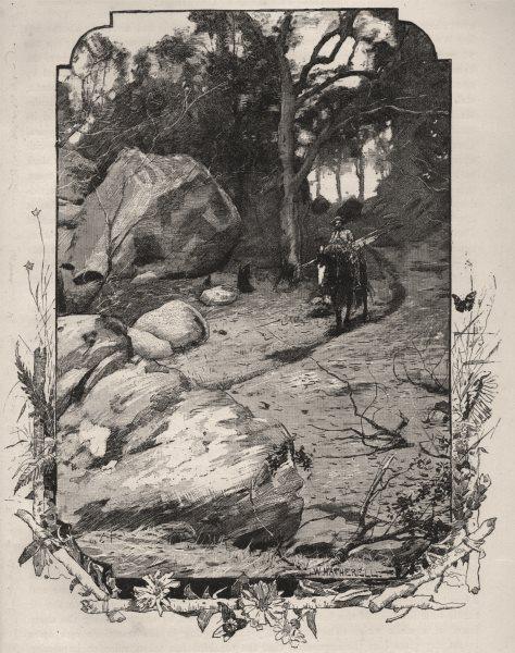 Associate Product A Bush Track, Murrurundi. The Hunter Valley. Australia 1890 old antique print