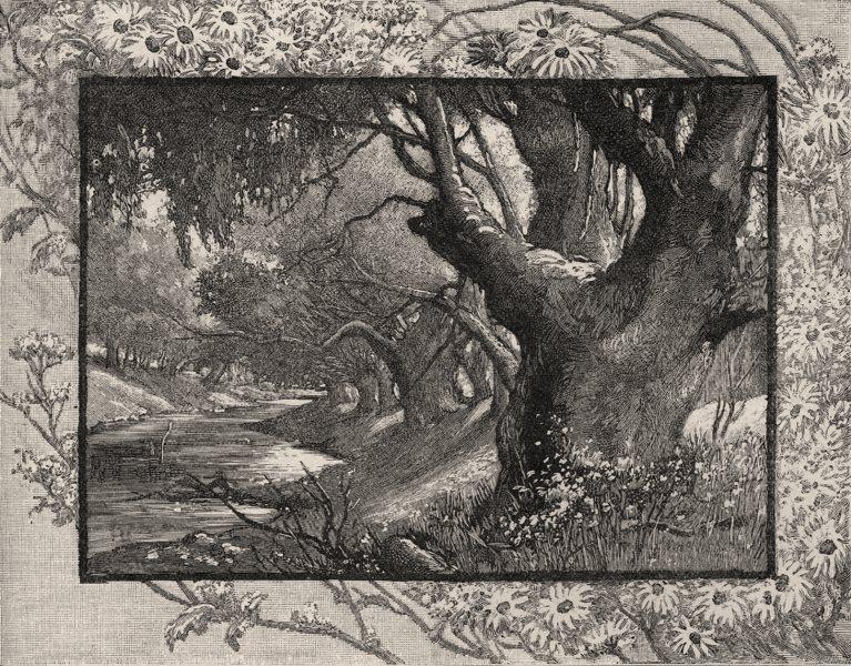 Associate Product On the Campaspe, near Eohuoa. The Murray river basin. Australia 1890 old print