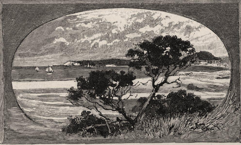 Associate Product Distant View of Granite Island. The Murray river basin. Australia 1890 print