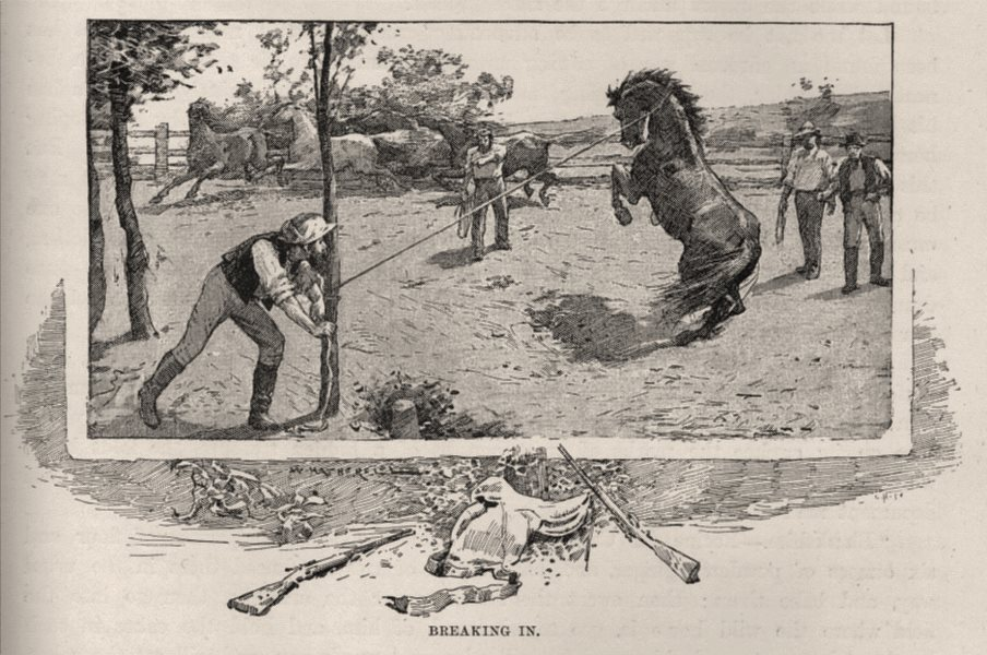 Associate Product Breaking In. The Brumby. Australia 1890 old antique vintage print picture