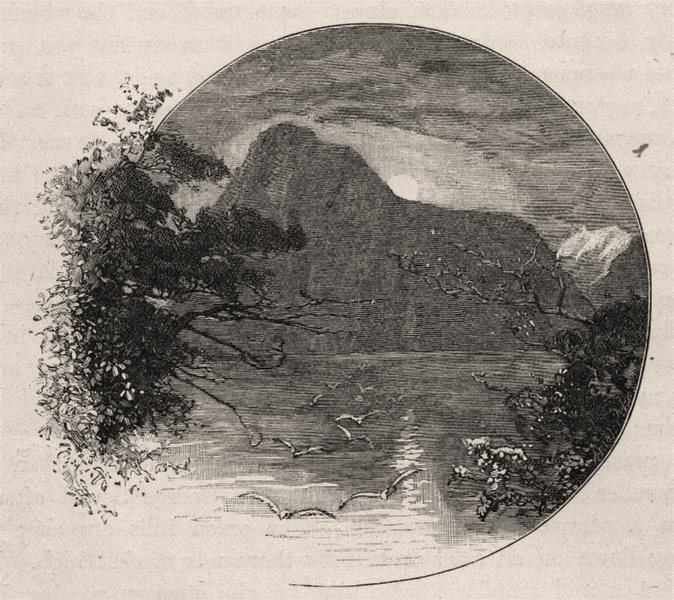 Associate Product The Lion, Milford Sound. The West Coast Sounds. New Zealand 1890 old print
