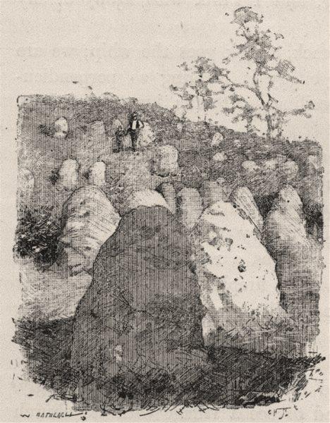 Associate Product Ant Hills. Australia 1890 old antique vintage print picture