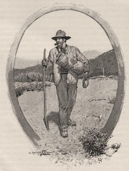 Associate Product A Swagsman. Australia 1890 old antique vintage print picture