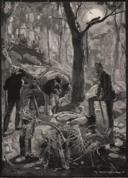 Associate Product Opossum Shooting. Australia 1890 old antique vintage print picture