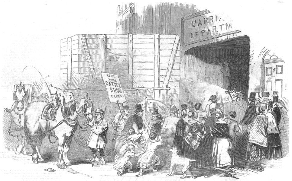 Associate Product LONDON. Smithfield Club Christmas cows Show. Prize at Bazaar, Baker Street, 1844
