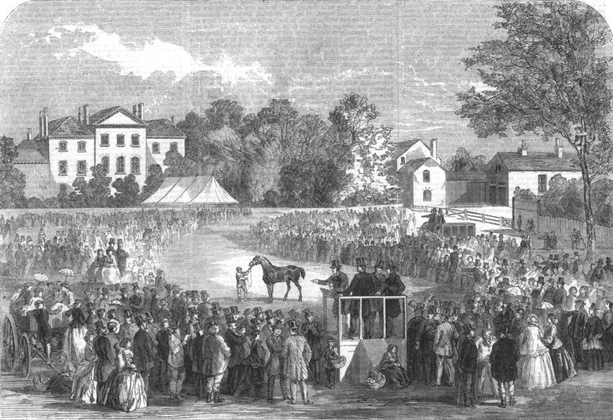 Associate Product QUORN. Sale of the Earl Of Stamford's hunting stud, antique print, 1863