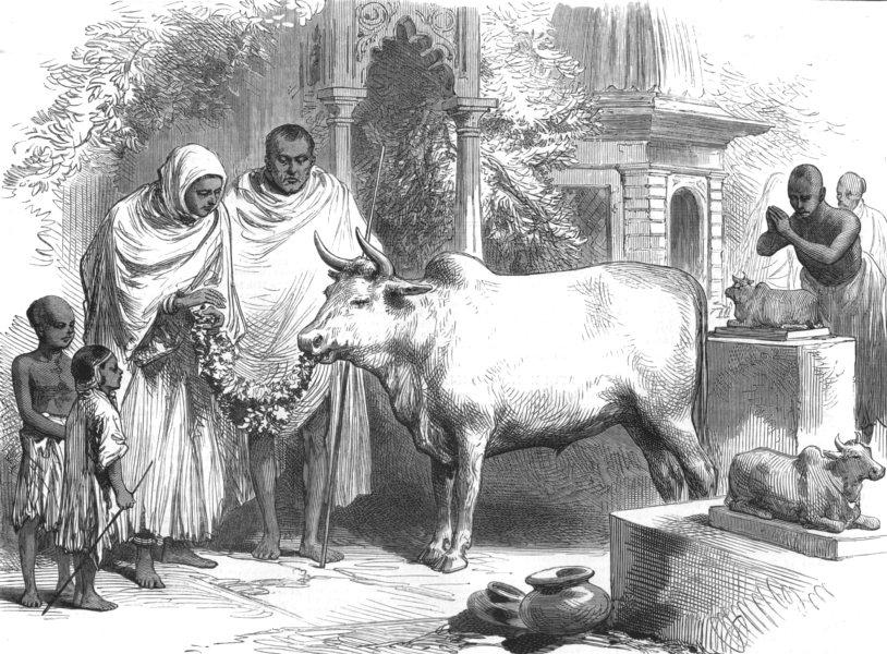 Associate Product INDIA. A Sacred bull, Varanasi, antique print, 1876