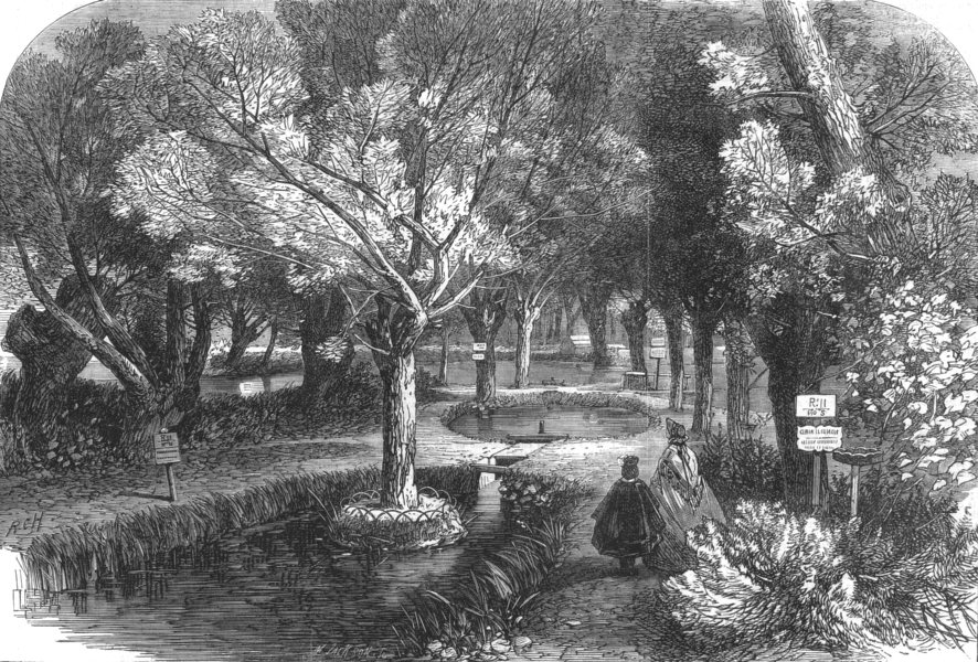 Associate Product HAUT-RHIN. Experimenting ponds at the Huningue fish Nurseries, old print, 1864
