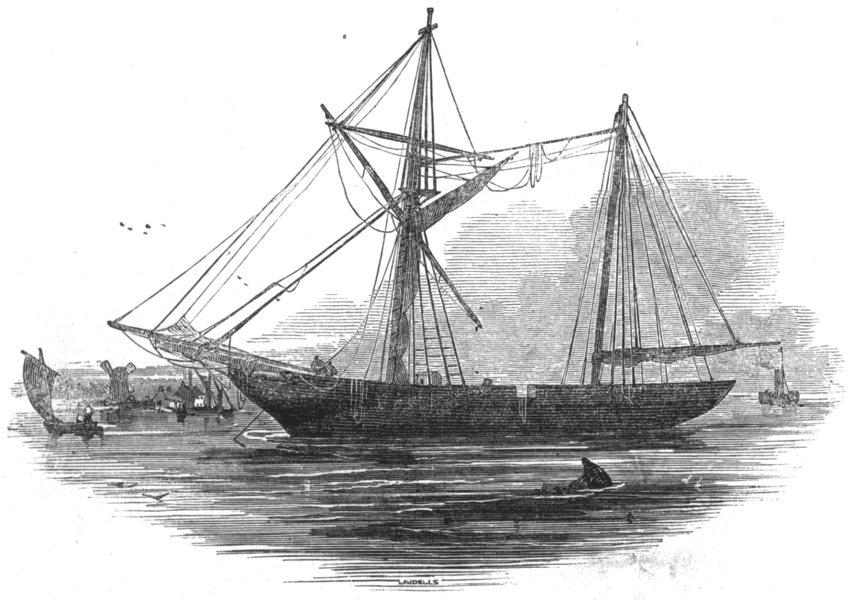 Associate Product LONDON. The Schooner Echo, St Katherine's Docks, antique print, 1845