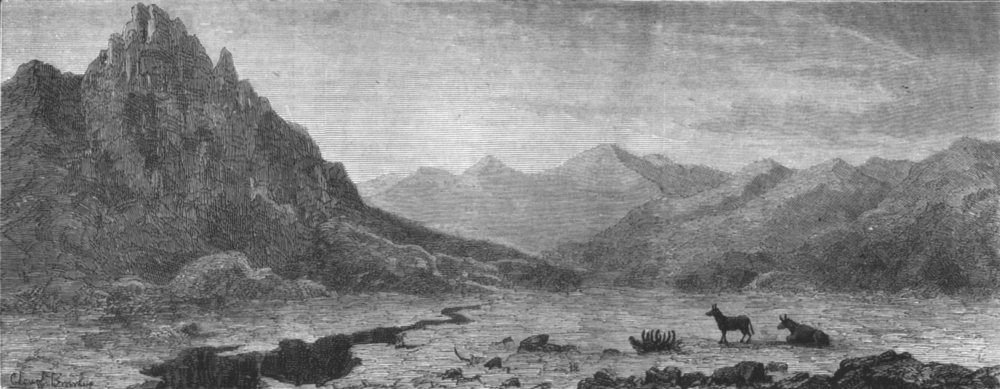 Associate Product INDIA. Ladakh scenery-The Kiang-chu Maidan, antique print, 1878