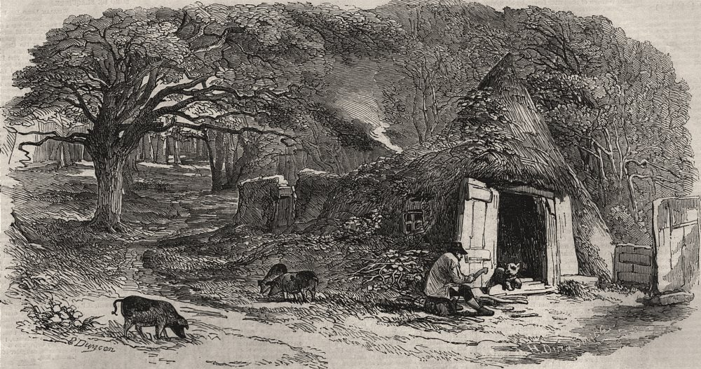 Associate Product Sketches in Hainault Forest. Hut in the middle of the forest. London, 1851