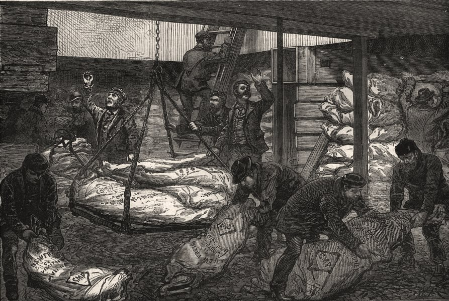Associate Product Landing Australian frozen meat from Sydney, West India Dock, Millwall, 1881