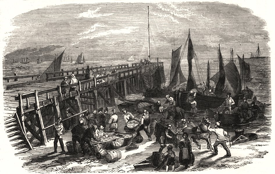 Associate Product The Yarmouth herring fishery - return of the boats. Norfolk, antique print, 1856