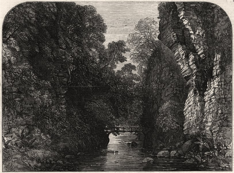 Associate Product Queen Victoria's visit to Sutherlandshire: Golspie Burn. Scotland, print, 1872