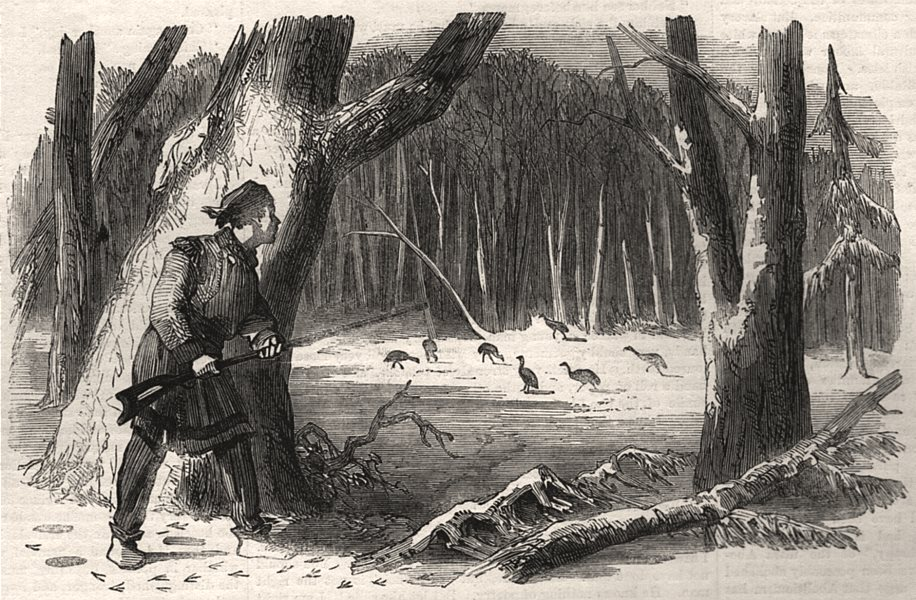 Associate Product Sporting scenes in Canada. Wild Turkey shooting. Canada, antique print, 1858
