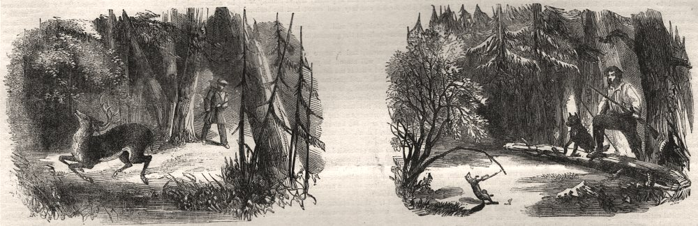Associate Product Sporting scenes in Canada. Deerstalking: the death jump; round traps, 1858