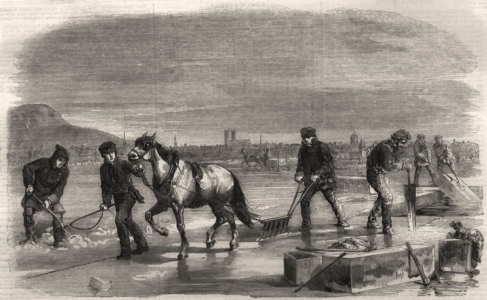 Associate Product Sawing and ploughing the ice on the St. Lawrence. Canada, antique print, 1859
