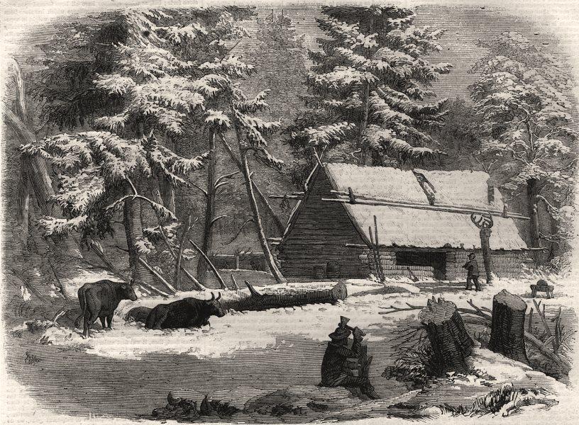 Associate Product Lumbering in New Brunswick - lumberman's camp house. Canada, antique print, 1858