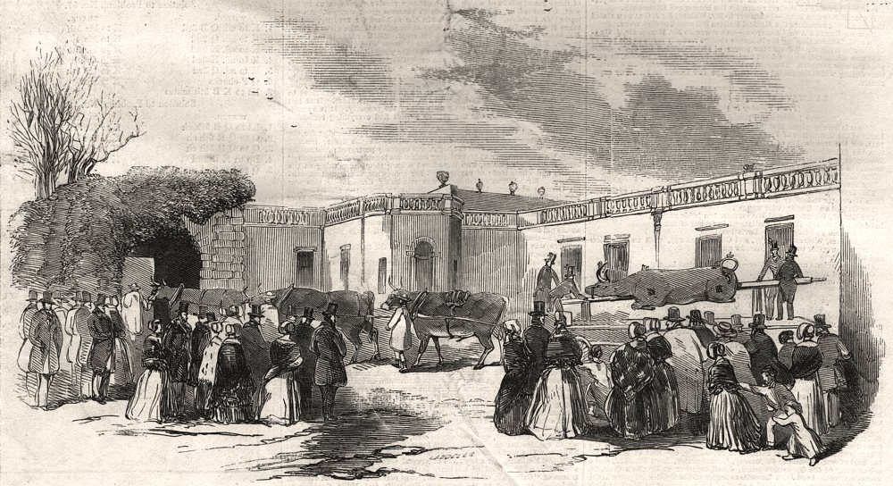 Associate Product Badminton House. Procession of the ox. Gloucestershire, antique print, 1845