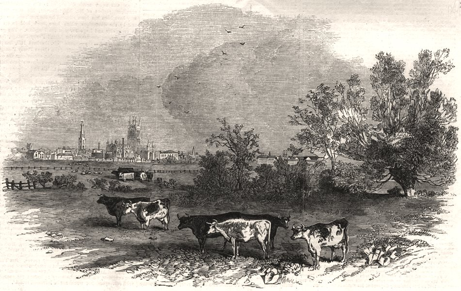 Associate Product The city of Gloucester, from the Castle Meadows. Gloucestershire, print, 1853
