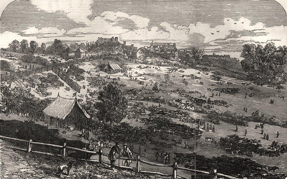 Associate Product Barnet Fair. London, antique print, 1849
