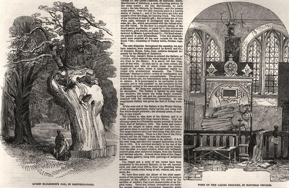Associate Product Queen Elizabeth's Oak, Hatfield Park; Brocket Ladies tomb, Hatfield Church, 1846