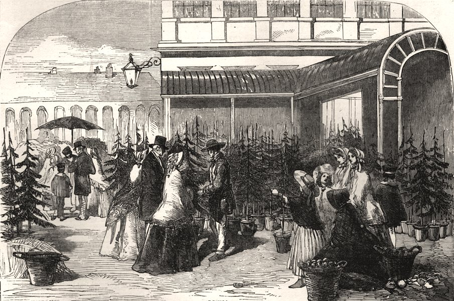 Associate Product Christmas trees in Covent Garden market. London, antique print, 1854