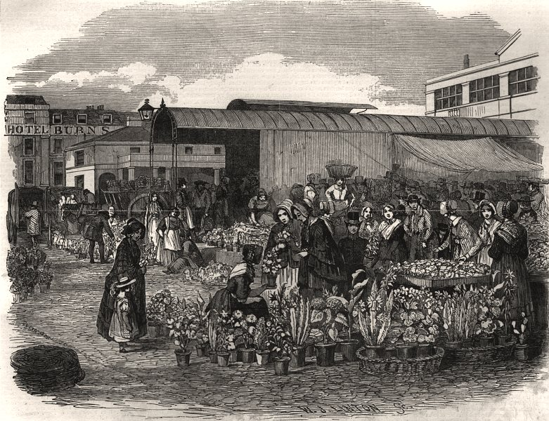 Associate Product The flower market in Covent Garden. London, antique print, 1848